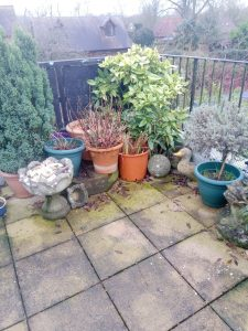 Before cleaning the patio is discoloured and slippery with algae